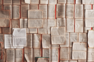 Books papered wall