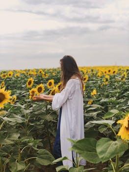 Person sunflowers pexels-photo-1222464